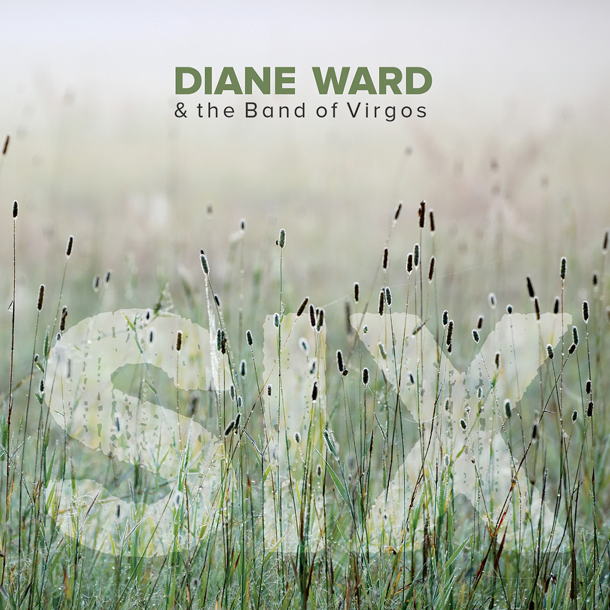 Diane Ward & the Band of Virgos - Six